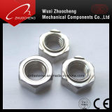 Noix Hex de soudure de l'acier inoxydable DIN929