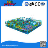 Binnen Creatieve Speelplaats van de overzeese Baby van de Stijl de Grote met Apparatuur van de Gymnastiek van de Pool van de Bal de Binnen