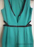 Dame-elegantes Kleid mit der Taillen-Reißverschluss-an Rückseite, kleidend