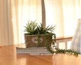 (BC-SF1007) Eco-Friendly Handmade естественная корзина цветка сторновки