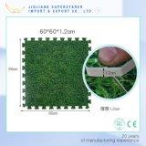 草様式のエヴァの鮮やかな這うマット、ホーム装飾の赤ん坊のカーペット