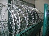 Cercado revestido galvanizado del alambre de púas del alambre de púas /PVC/del alambre de la lengüeta (fábrica)
