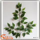 Künstliche Ficus-Blätter hergestellt vom Handweichen Plastik