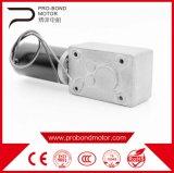 Alto motor del engranaje del reductor del gusano de la torque de la C.C. 12V