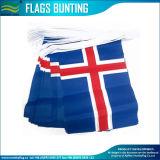 Indicateurs de guichet de véhicule de l'Islande, indicateurs de main, indicateurs nationaux, indicateurs donnants un petit coup (B-NF10F02033)