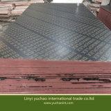 La película del precio bajo hizo frente a la madera contrachapada para Constrution 18m m