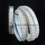 Tiras dobles ultrafinas impermeables de la fila 5050 el 120LEDs/M LED