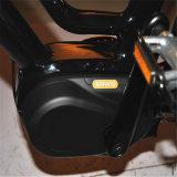 De Elektrische Fiets van de lage Prijs met Goede kwaliteit (rseb-512)