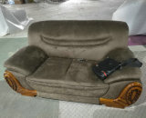 China que exporta o sofá de couro, sofá da tela, mobília da sala de visitas, mobília Home (2109)