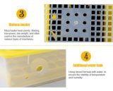 Incubadora automática cheia do ovo da galinha do ovo quente da venda 48 (YZ8-48)