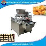 Linha de processamento do biscoito da padaria que dá forma à maquinaria