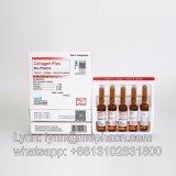 Injeção de colágeno 250 Mg Plus para branqueamento da pele / Anti-envelhecimento I. M ou S. C