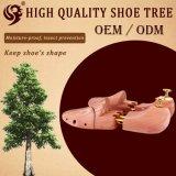 Normale Gefäße der Entwurfs-Zeder-zwei Wholesale hölzernen Schuh-Baum