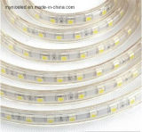 DC12V/24V 2835/2216/3528/3014/5050/5730 IP68 impermeabilizan la tira flexible del LED
