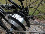 Bicicleta eléctrica de gran alcance vendedora caliente de la ciudad 2016 con el pedal asistido