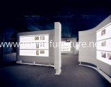 展示会のためのカスタマイズされた展覧会のLED表示立場