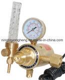 Elektrisch Verwarmd voor de Regelgever van het Gas van Co2 (cbm-c)