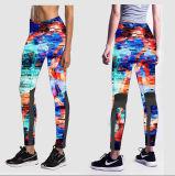 Pantaloni sexy su ordinazione di yoga del commercio all'ingrosso del contrassegno privato di prezzi competitivi