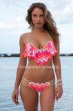 Neuer Entwurfs-preiswerter Badeanzug-Badeanzug-Frauen plus Größen-Badebekleidung