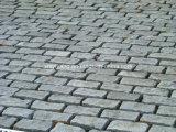 Pietra per lastricati all'ingrosso del granito di pietra naturale (YQC)