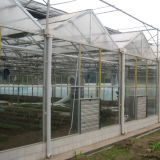 De serre Van uitstekende kwaliteit van het Glas Multispan voor Verkoop