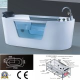 2015new Sanitary Ware Glasses Massage Bathtub (5401)