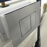 A cisterna escondida para a parede pendurou o toalete (G30031)