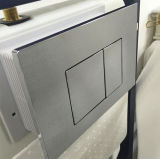Autorisation de filigrane Citerne dissimulée pour réservoir de toilette / eau sanitaire murale Sanitary Ware (G30031)