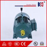 Bremsen-Motor Serie Yej-90L-4 Wechselstrom-Asynchronou für Verpacken-Maschinerie