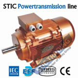 IEC Cast Iron Ie3 Electric Motor