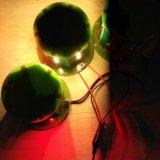Falò del LED che avverte ambra blu rosso-chiaro 12-24VDC
