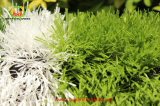 よい価格の中国からの直接工場サッカーの人工的な草