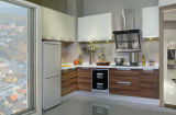 Governo professionale della famiglia ed armadio da cucina