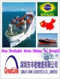 Serviço de transporte do frete de mar (FCL/LCL) de China a Brasil