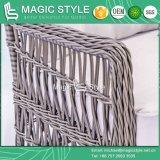 藤のSunlounger優雅な日曜日のベッドの余暇の寝台兼用の長椅子の特別な編むサンルーム(魔法様式)