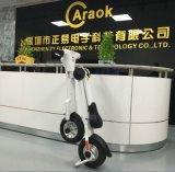 Heißes Verkaufs-und Roller-faltbares Motorrad