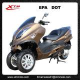 De Volwassenen van het Gas van China EPA staan de Autoped Trike op van de Mobiliteit 300cc