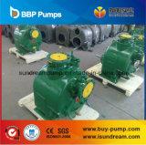 Hohe Kapazitäts-Selbstgrundieren-Pumpe (Edelstahlmaterial)