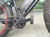 36V350W MID Drive Motor Kit per il Fat Bike