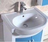 Modules de salle de bains fixés au mur simples de PVC avec le Module latéral