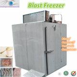 - 35 graus de congelador de C Stainless Steel Commercial Blast para Meat Chilling (BF-2S)