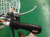 48V 10ahのリチウム電池の電気バイクが付いている炭素鋼フレーム
