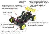 Automobile ad alta velocità della nuova scala nitro RC di arrivo 2.4G 1/10