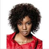 Peruca pequena do cabelo do volume da explosão européia e americana da forma da peruca da mulher preta