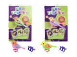 pájaro a solas del canto de 445796-Voice Digibirds juguete inteligente