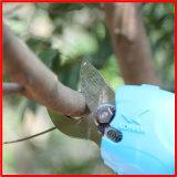 Koham оборудует литий вырезывания ветвей вала Cirtus