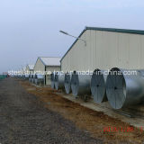 Poultry prefabricado House con Full Set Poultry Equipment