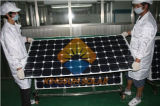 260-315W Mono-Crystalline Silicon Solar Panels/Solar Modules