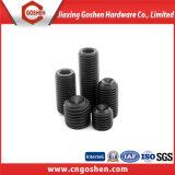 Schwarze Kontaktbuchse-Einstellschrauben mit Cup-Punkt DIN916