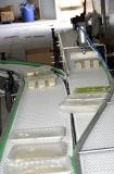 El mejor transportador de correa modular recomendado de la categoría alimenticia con alta calidad